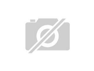 Siam Katzen Babys Tiere Bielefeld